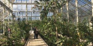 kew gardens serre