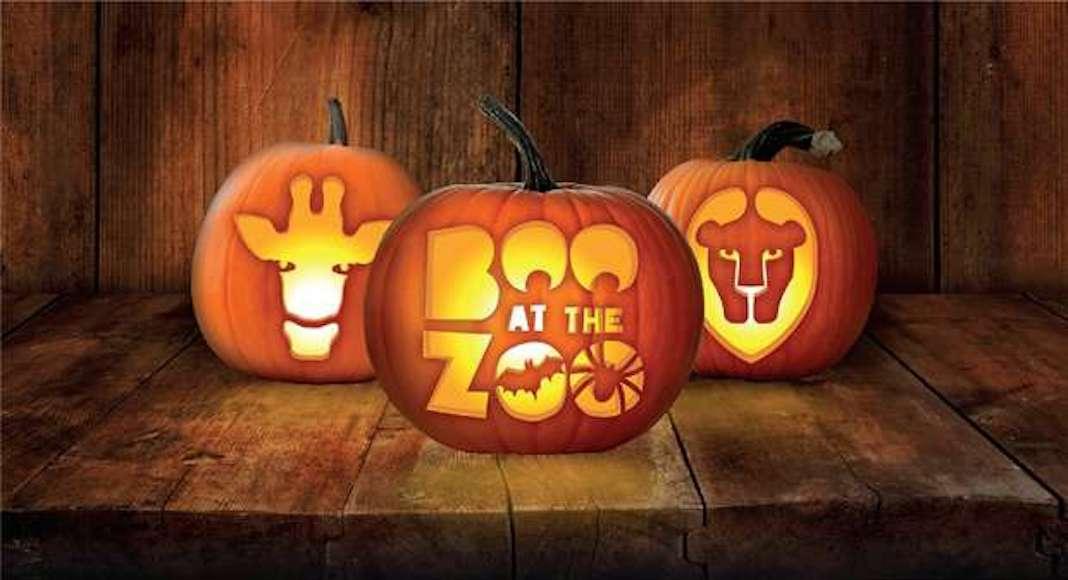 Halloween au Zoo de Londres