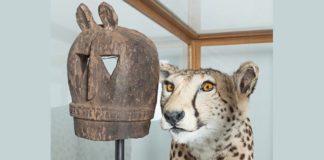 Kader Attia Museum of Emotion