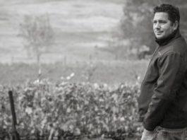 Julien Fayard podcast vino vidi vici