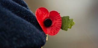 ou commémorer le 11 novembre remembrance day