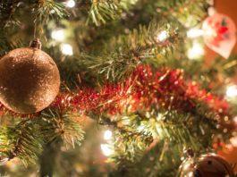 Où acheter son sapin de Noël à Londres
