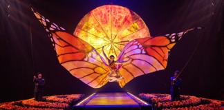 cirque du soleil spectacle luzia londres