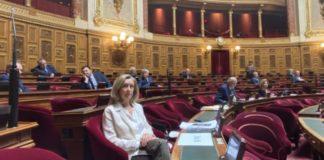 helene conway mouret senat aide francais etranger