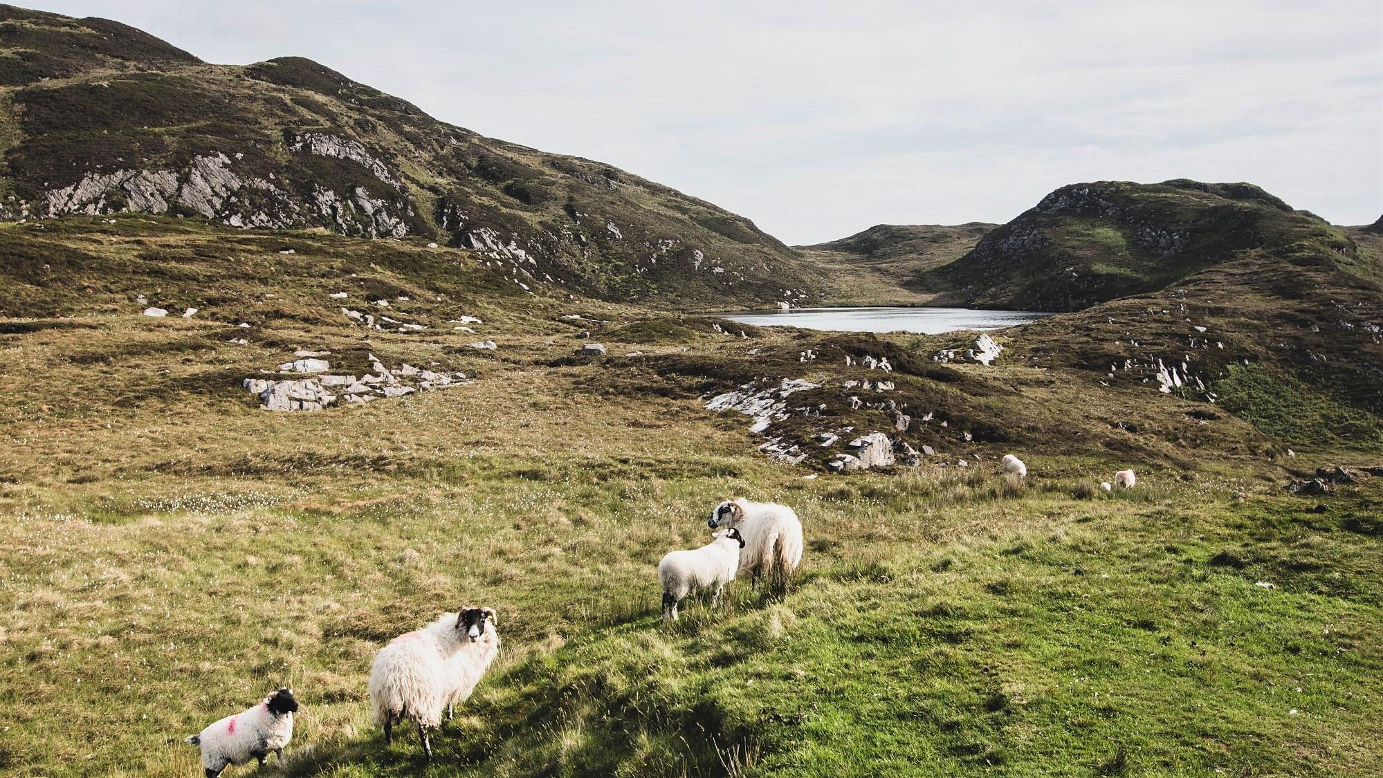 comté de Donegal, Irlande